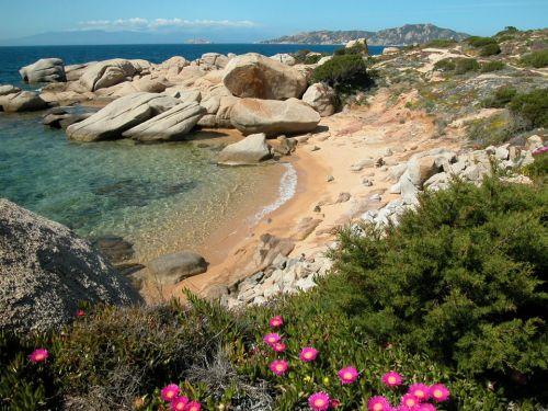 Wild Sardinian Beach in Spring